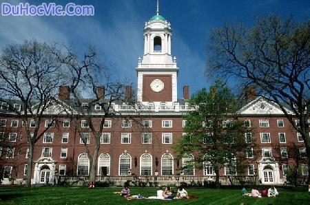 Đại học Harvard trường kinh tế hàng đầu