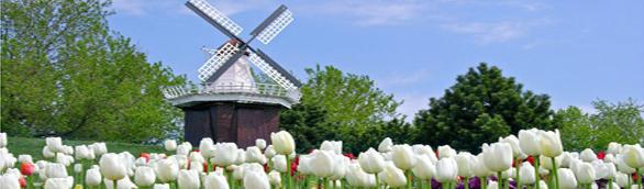 Giới thiệu du học Hà Lan