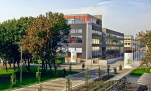 Đại học Stavanger (UiS)