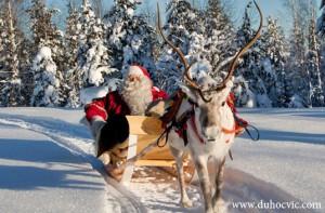 Du học Phần Lan – ĐH Khoa Học Ứng Dụng Lapland