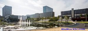 Trường Quản lý Rotterdam