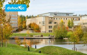 Đại học Umea – cơ sở giáo dục toàn diện hàng đầu Thụy Điển