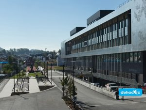 Đại học Cao đẳng Bergen