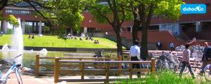 Đại Học Tsukuba sự lựa chọn hàng đầu khi du học Nhật Bản