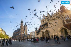 Du học Ba Lan: Tìm việc làm thêm ở đâu?