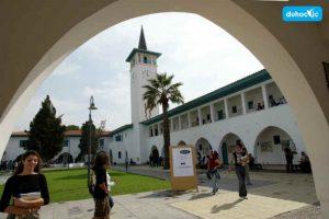 Đại học Cyprus