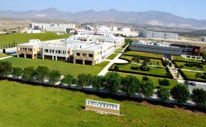 Đại học Quốc tế Síp