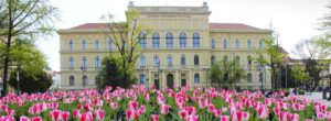 Hệ thống giáo dục Hungary có gì khác?