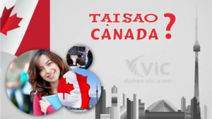 9 lý do nên chọn du học Canada