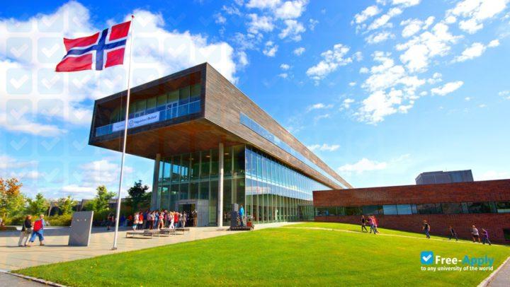 Ostfold University College