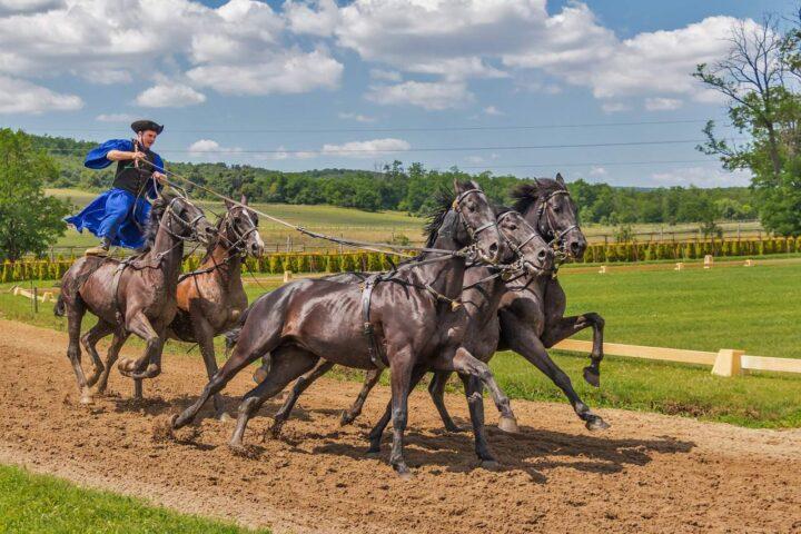 kỵ binh hungary