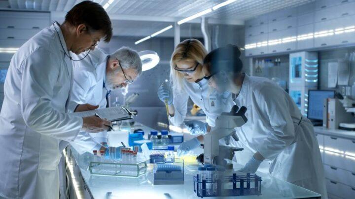 các chuyên ngành của kỹ thuật y sinh